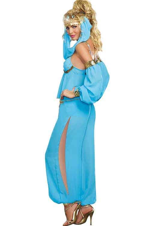 Dreamgirl 4 Pce Genie Costume back