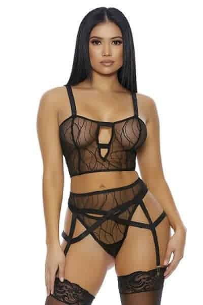 Forplay Textured Sheer Mesh Bra, Panty and Garter Belt fv
